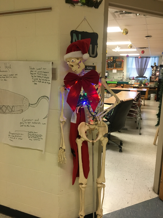 Science department getting in the spirit!